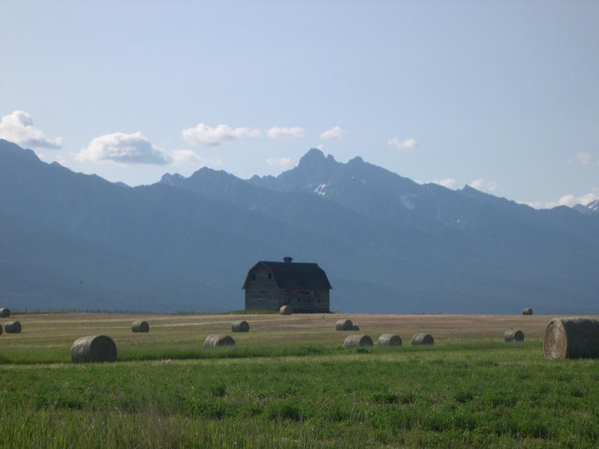 Montana Spread