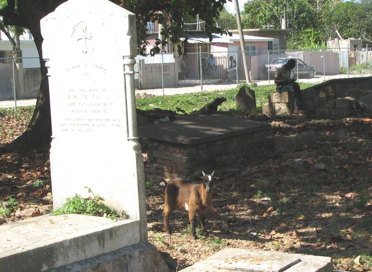 goats_and_graves_3_randy_mazie